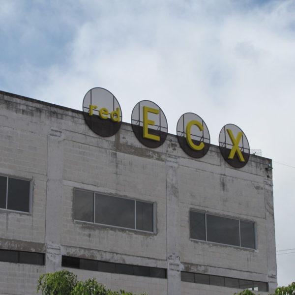 www.redecx.com